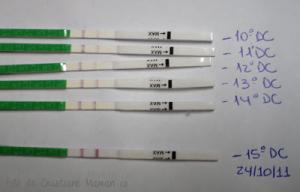 teste de ovulalçao