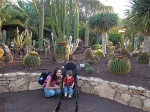 oasis park zologico em fuerteventura as melhores viagens de pititico 3
