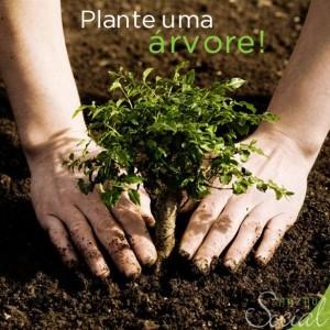 Plante uma Árvore e Garanta o Futuro dos Seus Filhos e Netos campanha de abril mamae tagarela