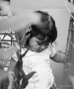como escolher o seu fotografo infantil vinicius camiza mamae tagarela