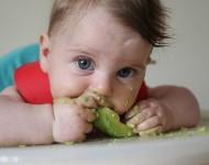 BLW – Baby Led Weaning – Alimentação Complementar