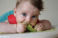 novo metodo de introducao alimentar blw baby led weaning