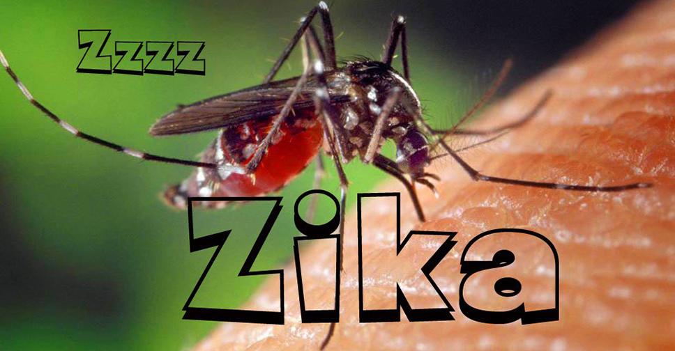 Zika Vírus e Gravidez