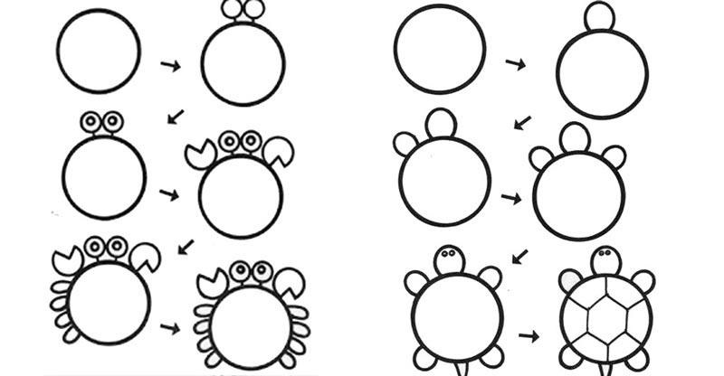 desenhos faceis de desenhar - caranguejo e tartaruga