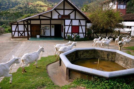 Fazenda Geneve - Teresópolis com Crianças