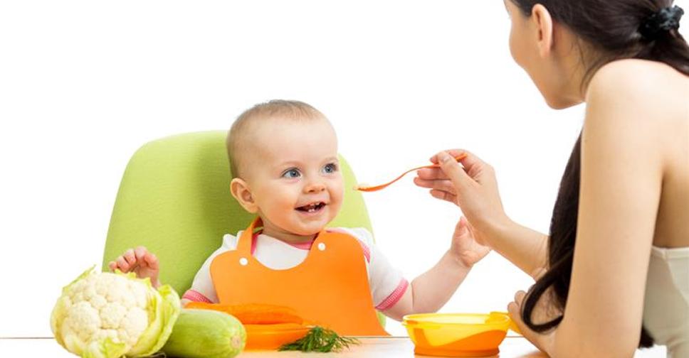 A Importancia do Alimento Organico na Gestacao e na Introducao Alimentar 2