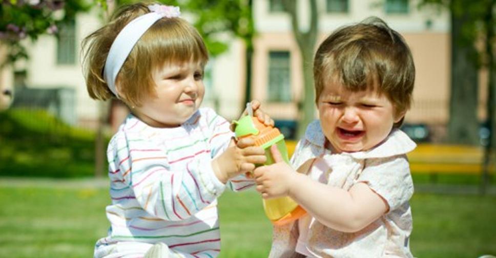 Eu Deixo Meu Filho Tirar Brinquedos das Outras Crianças