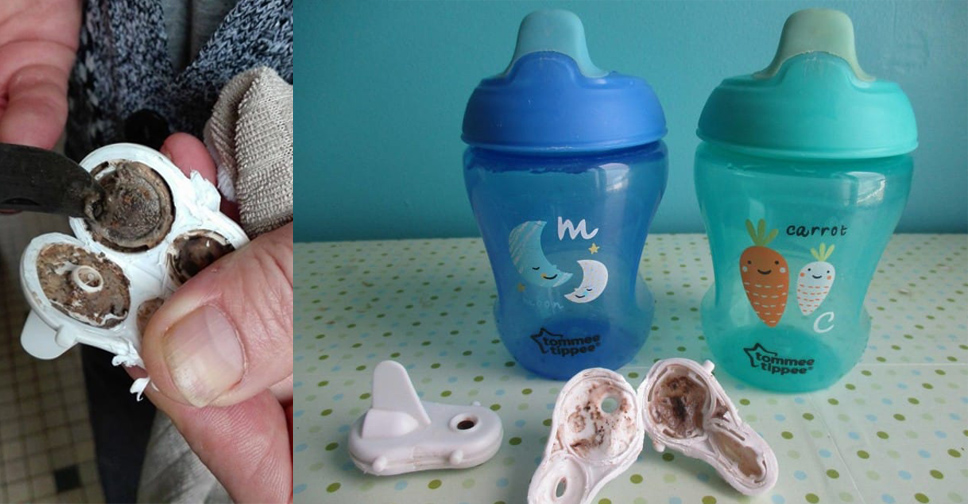 O Copo do Seu Bebe Tem Mofo Saiba Como Limpar