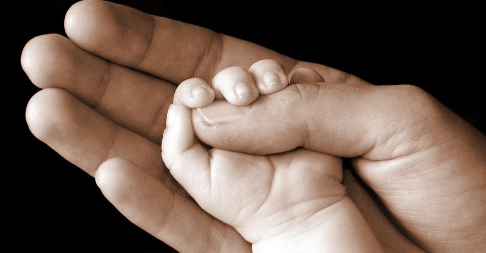 Não Se Deve Pegar Nas Mãos dos Bebês